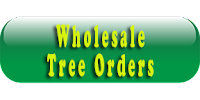 Wholesale Orders